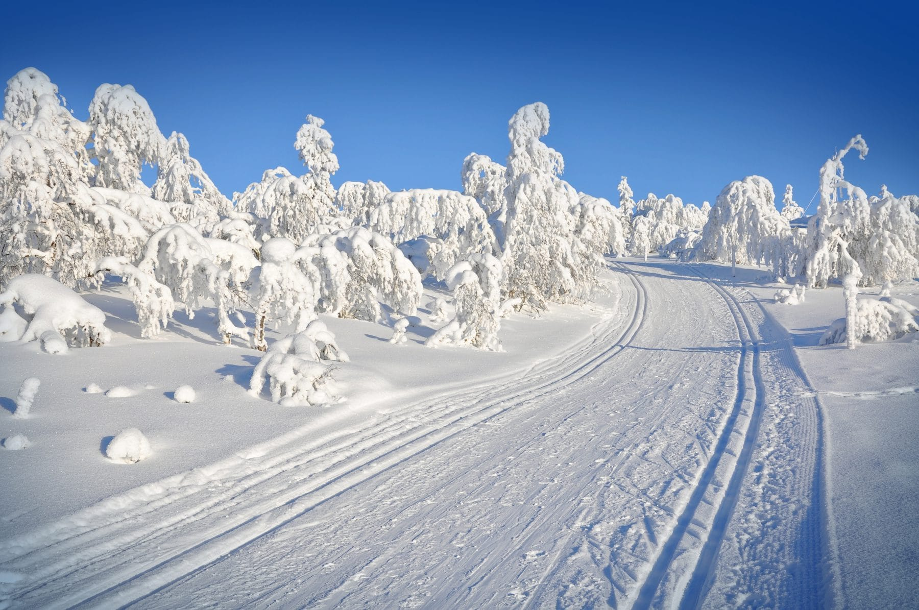 Sports Tracker skiing Lapland